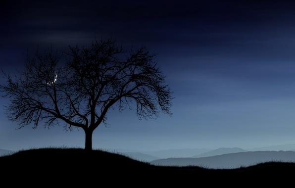 Картинка небо, трава, дерево, Луна, Холмы