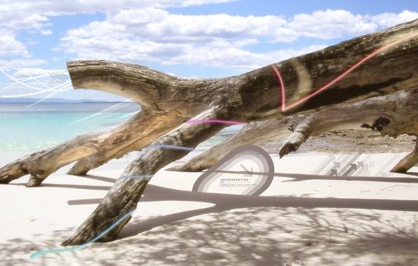 Картинка дерево, берег, обработка, Ствол