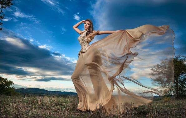 Картинка поле, девушка, деревья, природа, поза, модель, макияж, фигура, платье, прическа