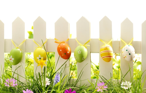 Картинка трава, цветы, природа, яйца, весна, пасха