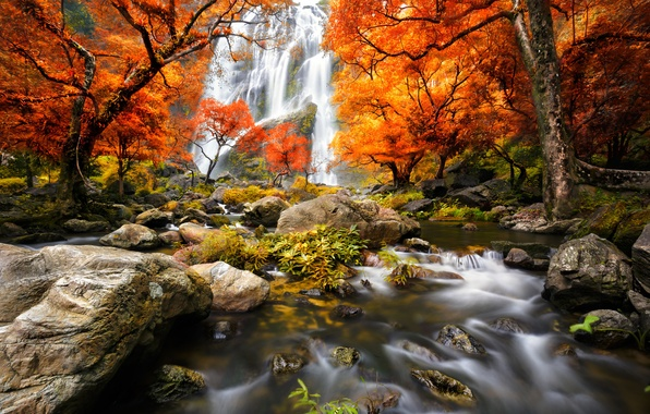 Картинка лес, вода, деревья, пейзаж, водопад, Природа, forest, river, trees, landscape, nature, water, autumn, view, scenery, …