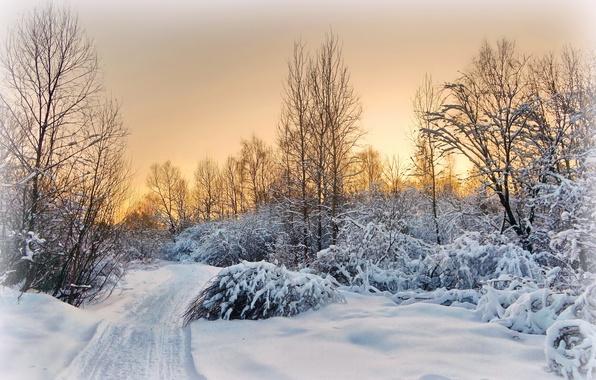 Картинка зима, дорога, снег, пейзаж, закат, вечер, деревня, подмосковье