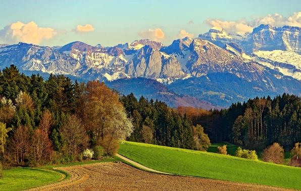 Картинка дорога, поле, лес, небо, облака, снег, деревья, горы, скалы, луг
