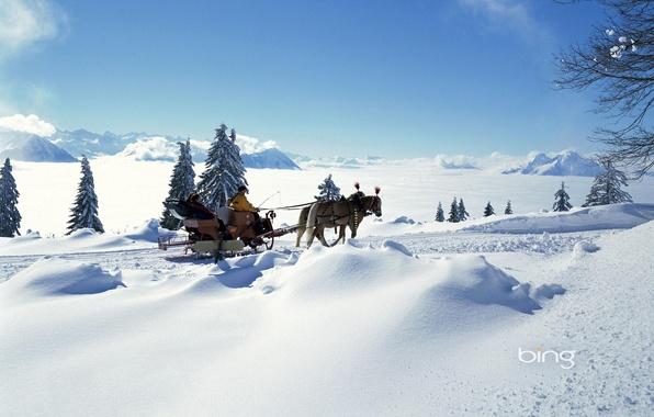Картинка зима, небо, солнце, облака, свет, снег, горы, люди, настроение, елка, ель, лошади, горизонт, мороз, сани, …