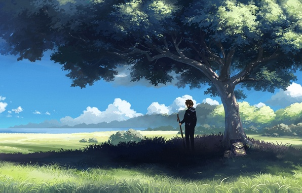 Картинка облака, дерево, человек, тень, даль