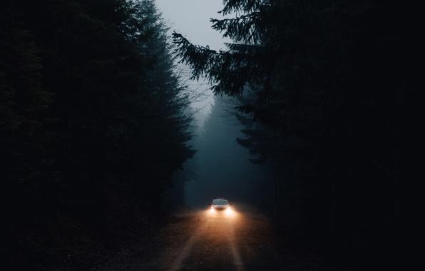 Картинка машина, лес, свет, темнота, фары