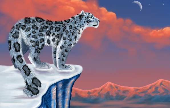 Картинка снег, горы, луна, рисунок, ирбис, снежный барс, snow leopard