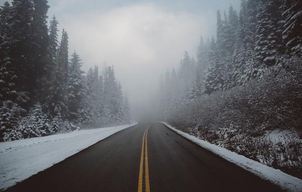 Картинка зима, дорога, лес, снег, природа, туман, дымка