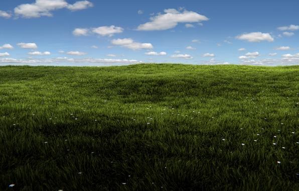 Картинка зелень, поле, лето, небо, трава, солнце, облака, рендеринг, Windows, summer, grass, sunshine, render, blender, блендер, …