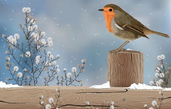 Картинка снег, природа, птица, рисунок, растение, столбик
