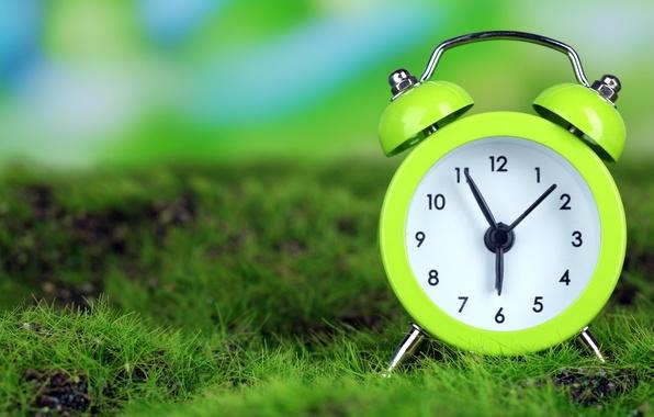 Картинка трава, время, часы, утро, будильник