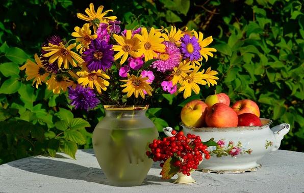 картинки на рабочий стол август цветы № 409682 без смс