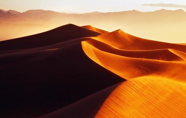 Картинка песок, свет, барханы, пустыня, человек, утро, дюны, золотые пески
