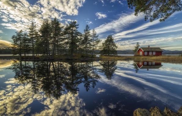 Картинка облака, деревья, озеро, дом, отражение, Норвегия, Norway, Рингерике, Ringerike