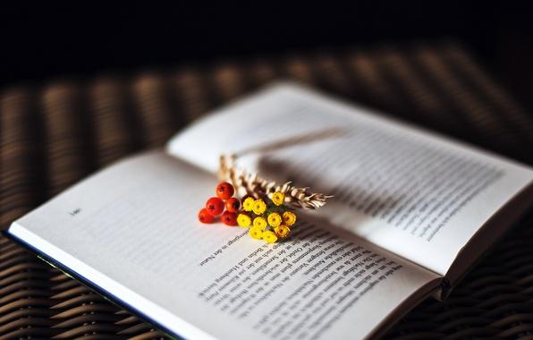 Картинка цветы, текст, ягоды, книга, страницы, колосок