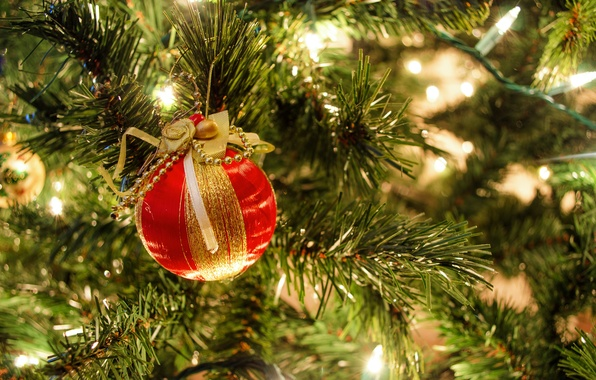 Картинка ветки, красный, праздник, елка, шарик, Новый Год, гирлянда
