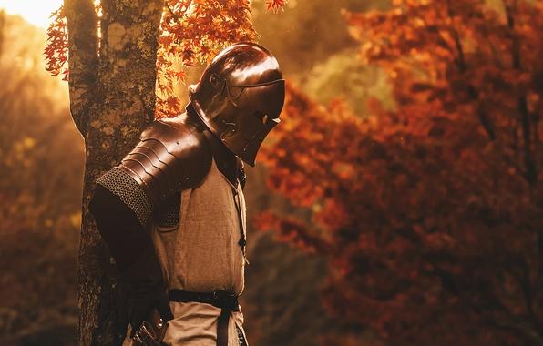 Картинка природа, металл, дерево, доспехи, воин, шлем, рыцарь
