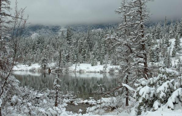 Картинка зима, лес, облака, снег, горы, озеро