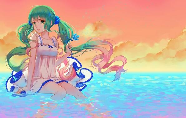 Картинка цветок, небо, вода, девушка, облака, закат, улыбка, аниме, арт, vocaloid, hatsune miku, kogomel