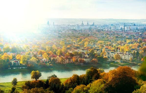 Картинка осень, солнце, свет, деревья, город, река, дома, Германия, Дрезден, Эльба, Germany, Dresden, Deutschland