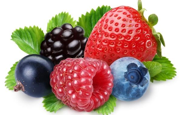 Картинка ягоды, малина, черника, клубника, ежевика, чёрная смородина