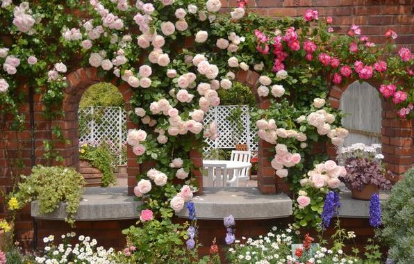 Фото обои цветы, ромашки, розы, сад