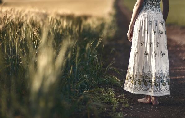 Картинка поле, девушка, платье, колосья