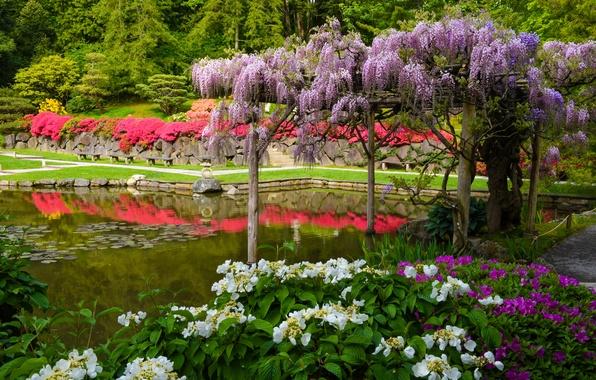 Обои для рабочего стола японский сад