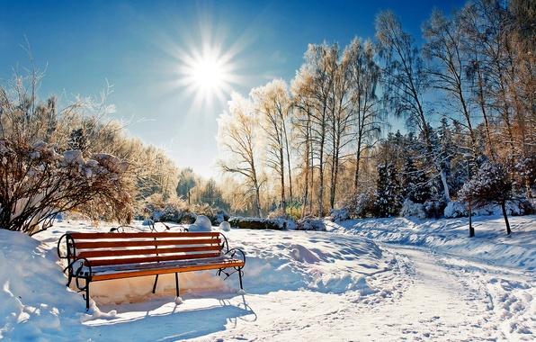 Картинка зима, лес, небо, солнце, снег, пейзаж, скамейка, природа, парк, white, forest, sky, landscape, nature, sunset, …