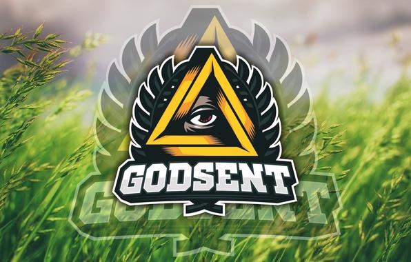 Картинки по запросу GODSENT