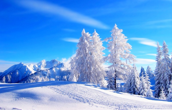 Картинка зима, дорога, лес, небо, снег, деревья, пейзаж, горы, природа, white, forest, road, sky, trees, nature, …