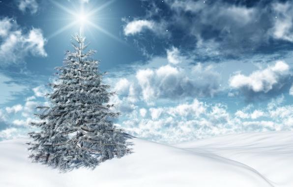 Картинка зима, небо, солнце, облака, свет, снег, праздник, новый год, ель, new year, sky, winter, clouds, …