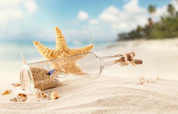 Картинка песок, море, пляж, тропики, бутылка, ракушки, морская звезда