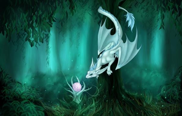 Картинка лес, взгляд, фантастика, дерево, дракон, растение, арт, хвост, любопытство