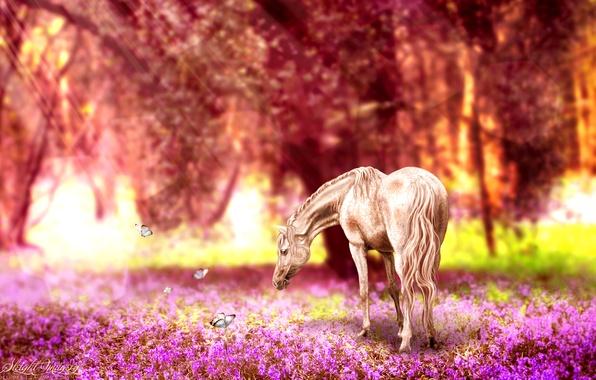 Фото обои ретушь, бабочки, лошадь, природа, цветы