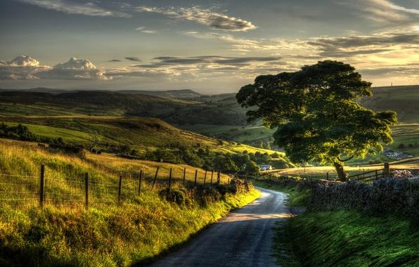Картинка зелень, небо, трава, листья, деревья, пейзаж, природа, фон, дерево, холмы, widescreen, обои, листва, забор, ограда, …
