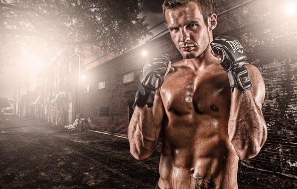 Картинка Gloves, Fight, Softbox