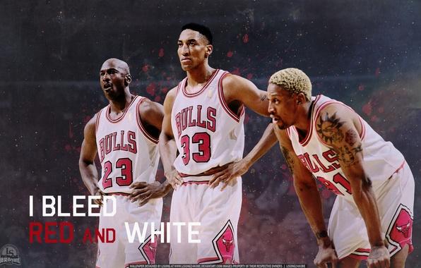 Картинка Баскетбол, Michael Jordan, NBA, Майкл Джордан, НБА, Basketball, Деннис Родман, Скотти Пиппен, Dennis Rodman, Scottie …