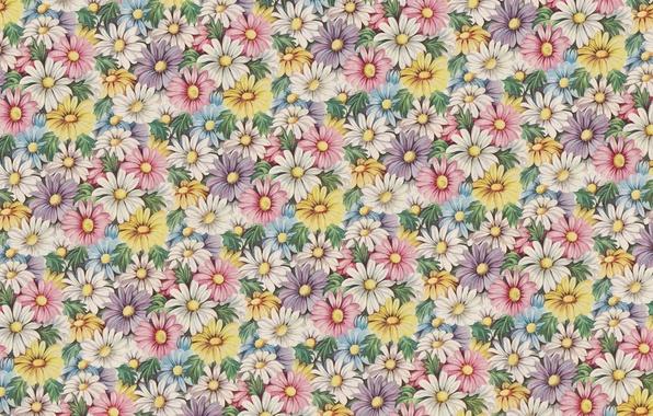 Картинка цветы, фон, настроение, текстура, арт, винтаж, космея