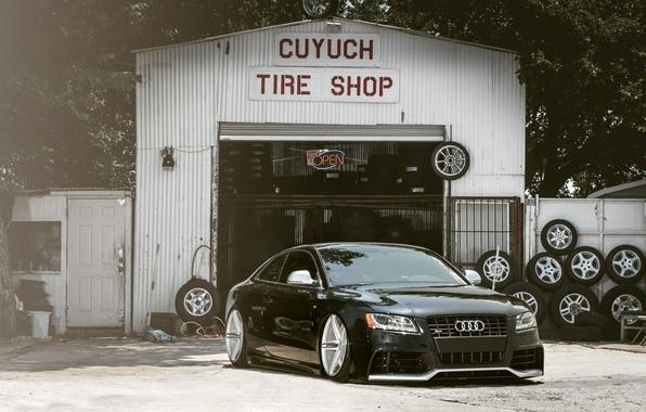 Картинка Audi, Авто, Забор, Деревья, Тюнинг, Машины, Посадка, Сервис, Шины