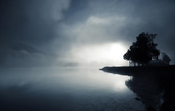 Картинка вода, деревья, туман, озеро, камни, холмы, сумрак, черно-белое