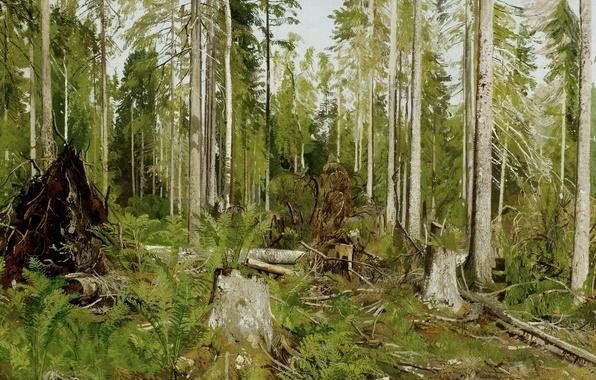 Картинка деревья, заросли, картина, живопись, Шишкин, Сосновый лес