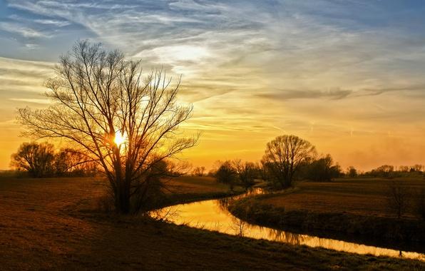 Картинка осень, деревья, пейзаж, природа, река, берега