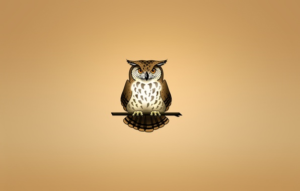 Картинка сова, птица, ветка, светлый фон, owl