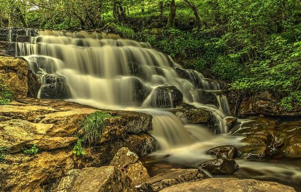 Фото обои водопад, деревья, лес, поток, скалы, река, камни, каскад