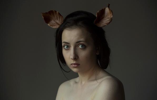 Картинка взгляд, листья, портрет, ушки, Big ears