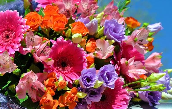Картинка цветы, фото, розы, букет, герберы, эустома, альстрёмерия
