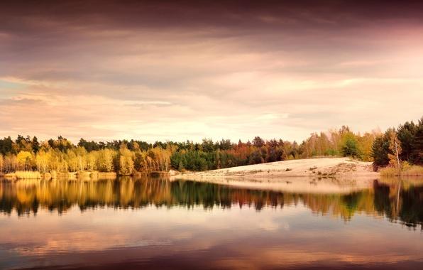 Картинка осень, листья, деревья, пейзаж, природа, озеро, отражение, берег, вечер, желтые, Германия, зеленые, Deutschland, Рудные Горы, …