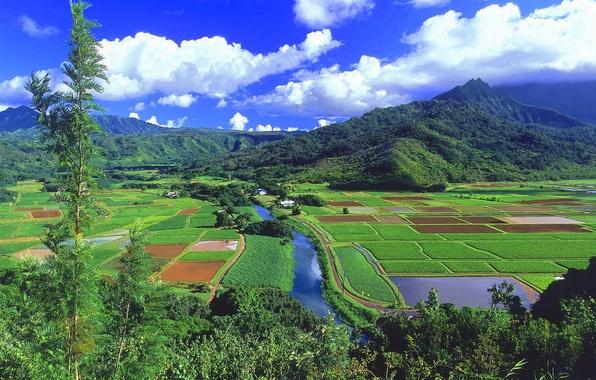 Картинка поле, лес, небо, облака, деревья, горы, природа, река, долина