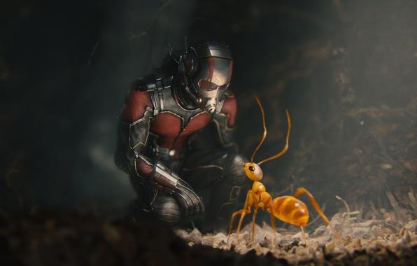 Картинка муравей, костюм, шлем, супергерой, комикс, Марвел, Ant-man, Человек-муравей